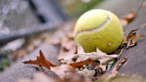 257707_tennisnyj-myach_-myach_-listya_-osen_-nastroenie__1920x1080_(www.GdeFon.ru)