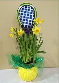 tenisz tavaszi árak
